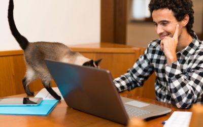 Télétravail et surconnexion : Comment gérer son temps de travail